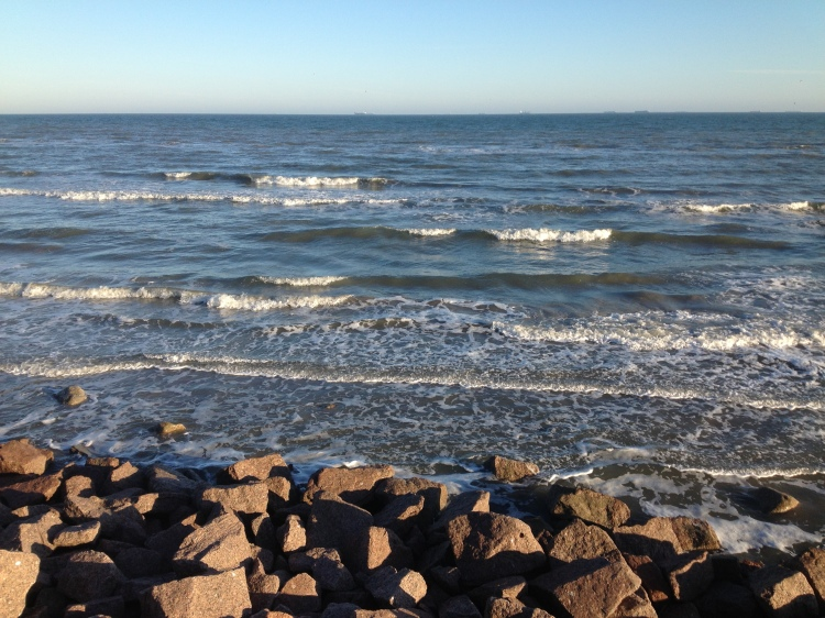 Shoreline of Galveston Island, I was there with two of my kiddos and we climbed along the rocks in search of hidden treasures caught there after the water rushed back into the sea.